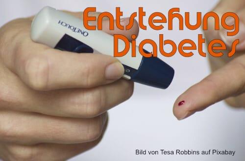 Diabetes - Entstehung und Vorbeugung