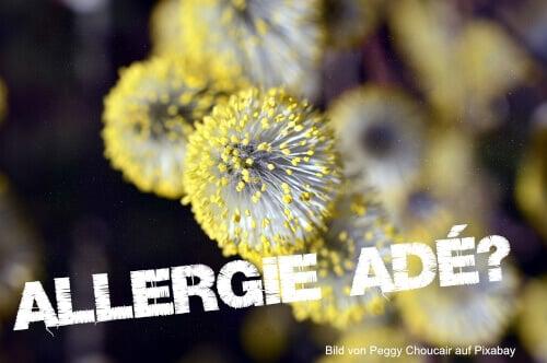 Heuschnupfen-Allergie ade